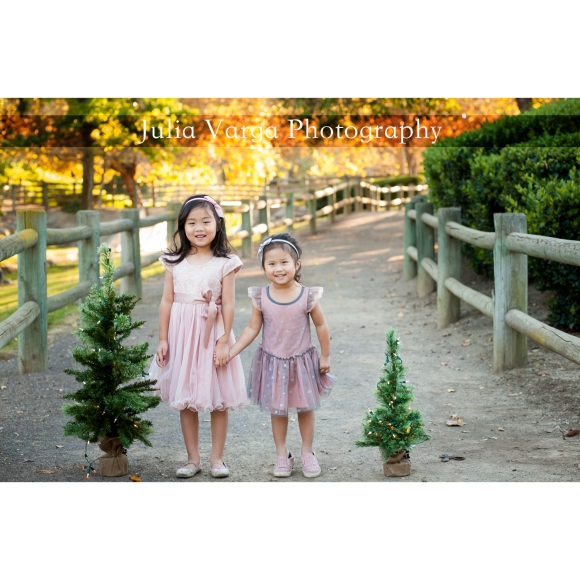 holiday portraits in the park